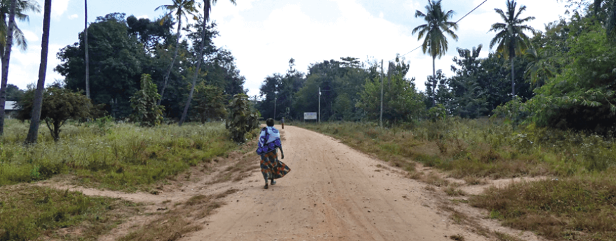 In Tansania. Auf Dem Weg zum Dorf Lugala
