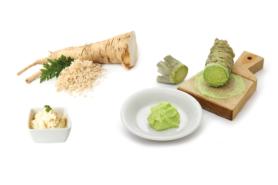 Meerrettich und Wasabi