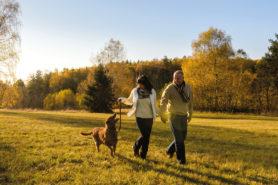 Titelbild, Paar spaziert mit Hund