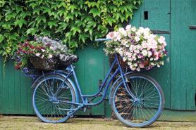 Blaues Fahrrad mit Blumenkorb