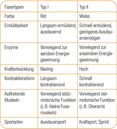 Tabelle Fasertypen