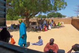 Senegalesen versammeln sich unter einem Baum